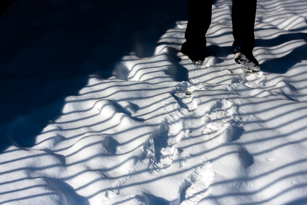Snowfall and Footstep