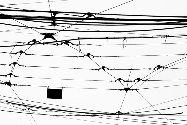 Roncesvalles Wires